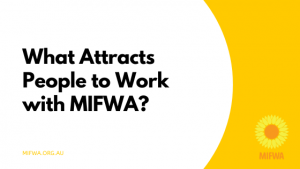 What Attracts People to Work with MIFWA?
